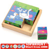 Wooden Box Activity Cube Puzzle Mini