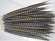 Wholesale beautiful natural pheasant feathers 12-14 inches / 30-35CM,reeves pheasant tail feathers
