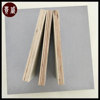 Film Faced Plywood Manufacturer 4x8 Plywood