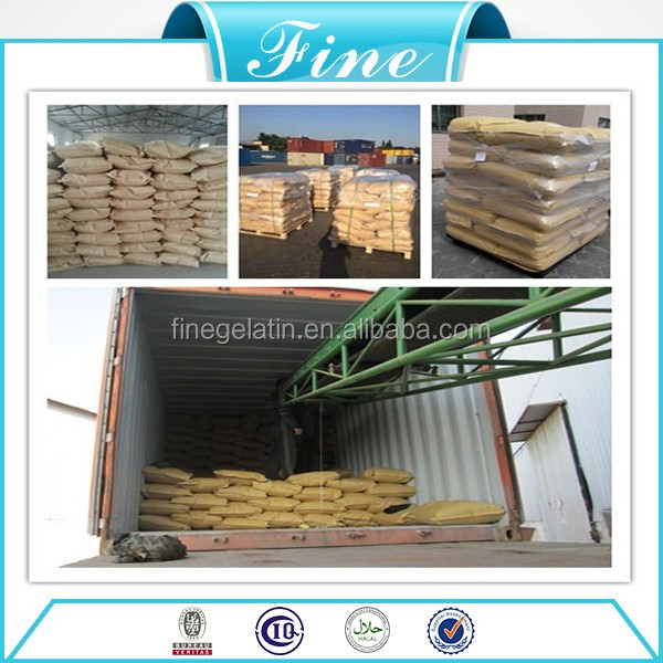 technical industrial pork skin sugar free gelatin manufacturer with best price