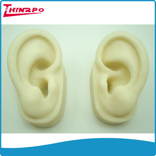 Wholesale Generic Silicone Ear Model Artificial Ear Display Accessory (Pair L & R)