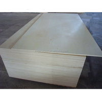 2.5mm 3mm poplar white birch plywood celing plywood