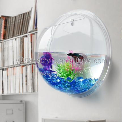 Small decorative acrylic fish tank wall mounted