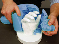 Body life casting mould alginate impression material, Alginate material impression chromatic powder manufactures