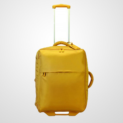 "Best Luggage 25"" Foldable With 2 Wheeled Upright"