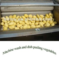 Hot sale in India Australia Canada Pakistan Nepal spray Multifunctional Vegetable and Fruit Washer
