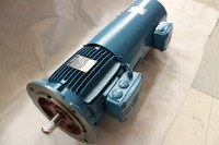 WEG Brand Efficiency IE2 Variable Frequency Electric Motor