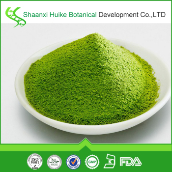 Private label matcha tea/green tea extract powder