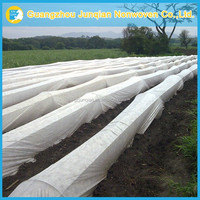 Biodegradable Nonwoven Fabric High Quality Agriculture Nonwoven Fabric Garden Cover Cloth