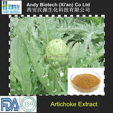 Bottom Price Factory Supply 100% Natural Artichoke