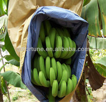 Technical banana growing paper bag,fruit paper bag in agriculture