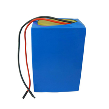 12V 24V 36V 48V 100Ah 20Ah LiFePO4 battery pack for e-bike