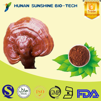 100% Natural Red Reishi Mushroom Extract Wholesale, Pure Glossy Ganoderma lucidum extract in bulk