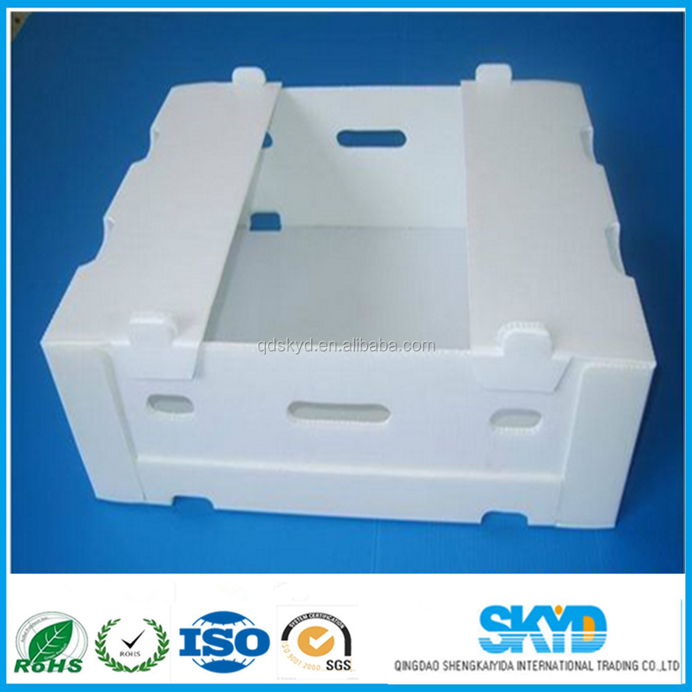 Fresh Fruits/ Vegetables Coroplast plastic Packaging Box