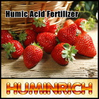 Huminrich Rich In 80% Organic Matter Humic Acid Supplement For Black Soil