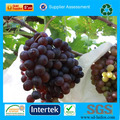 Nonwoven agriculture UV treament grape protection bag