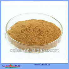 Factory price atropa belladonna extract