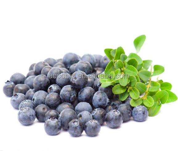 Bulk Supply Blueberry P.E. Anthocyanidin 15% 25% /Blueberry Extract Powder Wholesale