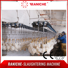 Automatical Poultry Chicken Slaughterhouse Machinery
