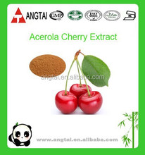 Organic West Indian Cherry Extract/Acerola Cherry Powder