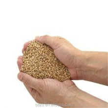 Animal Feed Wheat For Sale