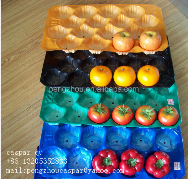 Tomato&Apple&Pear&Kiwi Fruit Packing Large Plastic Food Tray with Dividers