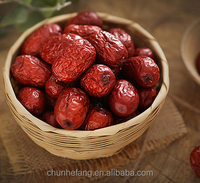 Organic chinese red dates with good price