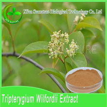 Organic tripterygium wilfordii extract/tripterygium wilfordii extract powder