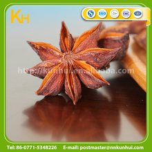 Food condiment spices whole and powder bulk star anise seeds