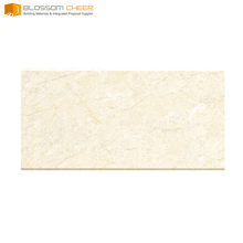 600x300 mm ceramic tile wall manufacturers thickness 9.7~9.9mm