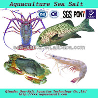 Aquaculture Sea Salt Fresh Seafood