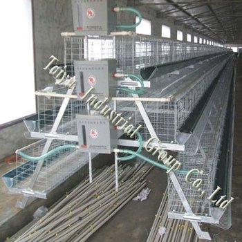 chicken poultry farm layer cage