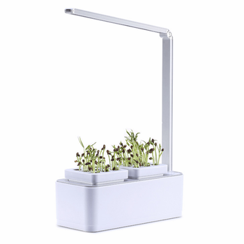 New DIY Mini garden hydroponic flower growing system with light for home use
