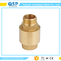 best selling brass spring water meter check valve