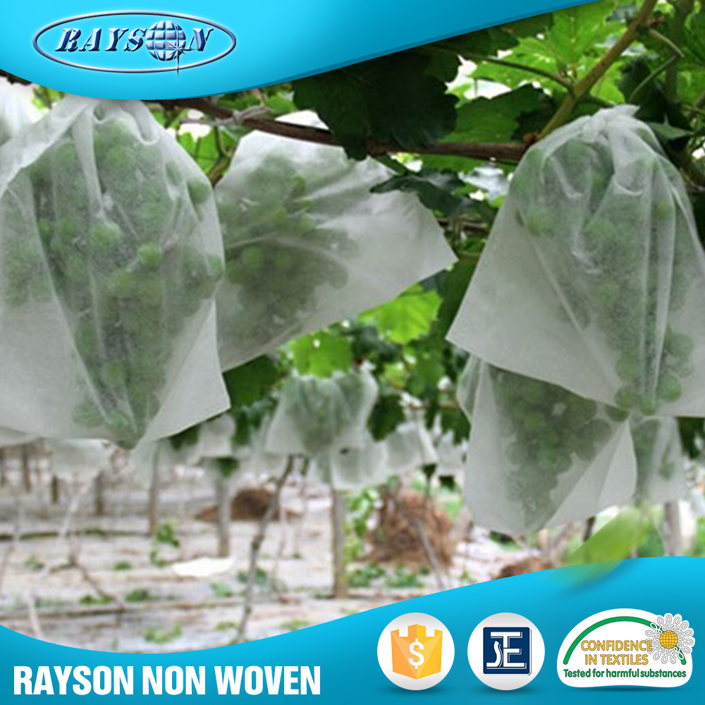 10-80gsm/m2 Plant Cover Made By Agriculture Nonwoven Fabric