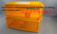 Big door and easy to pick chicken plastic oversize moving cage for chicken and birds