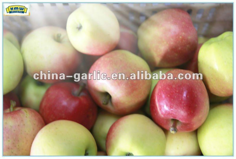 2012 China Summer Red Apple Price