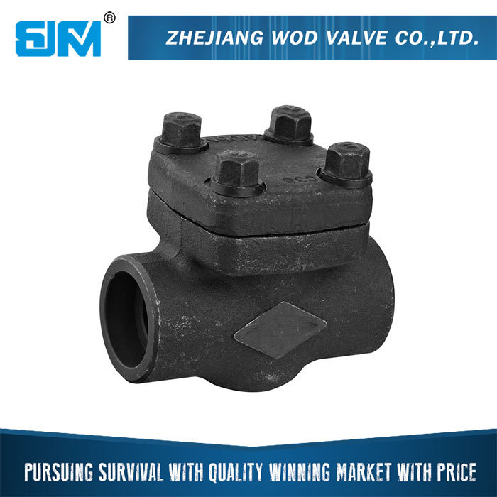 Top Quality Widely Use Best Price water pump nozzle check valve