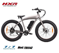 "26*4.0 "" fat tire electric bike big power electric bicycle 500w motor"