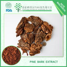 Hot Selling pine bark extract 80% pine bark extract pinus massoniana lamb