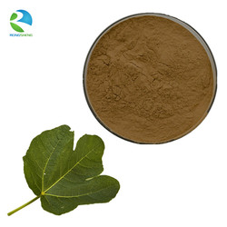 Top Quality Natural Fig Leaf Extract Powder