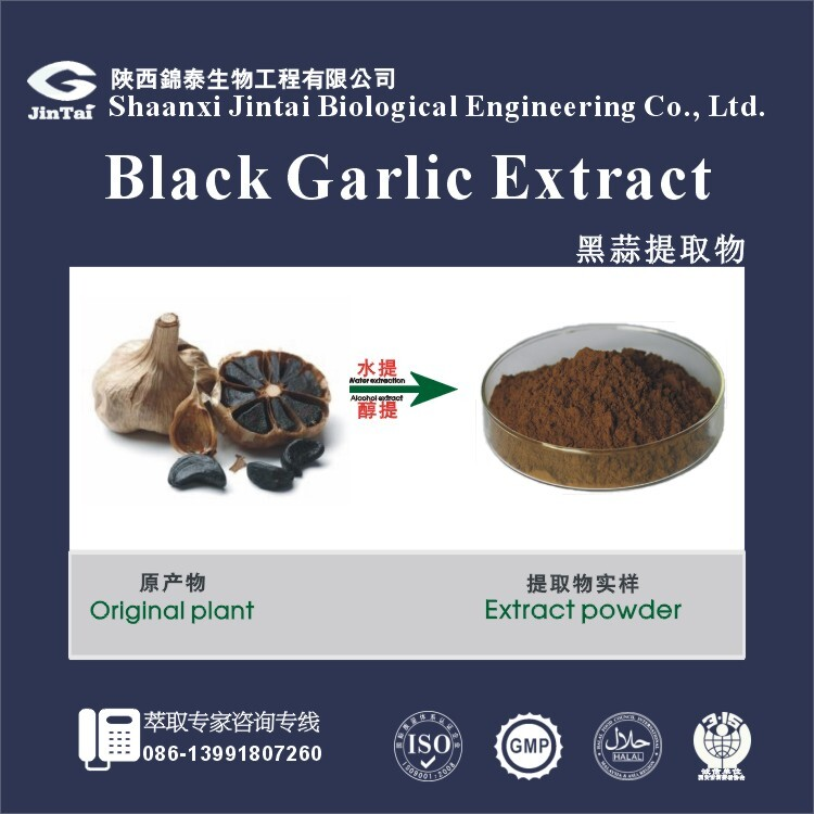 Black Garlic P.E.