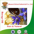 100% Natural & pure borage oil bulk with superior quality, borage seed oil