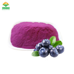 Factory Supply 100% nature blueberry fruit powder