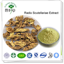 30% 85% 90% 98% natural baicalin radix scutellariae extract