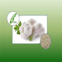 100% Natural Garlic extract Powder Garlic Powder Supplier
