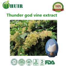 Natural and Pure tripterygium wilfordii extract 98% tripterygium wilfordii extract