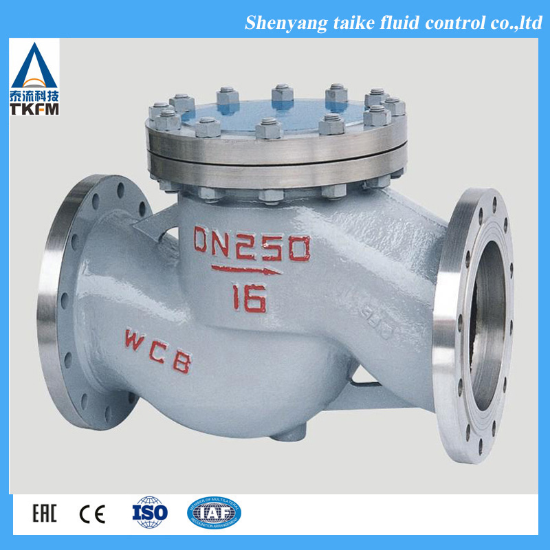 TKFM high quality flanged swing GB lift stainless steel dual plate swing ptfe made natural gas check valve dn80