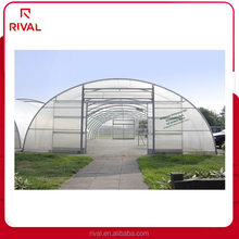 Transparent Agricultural Protective Plastic Film For Green House