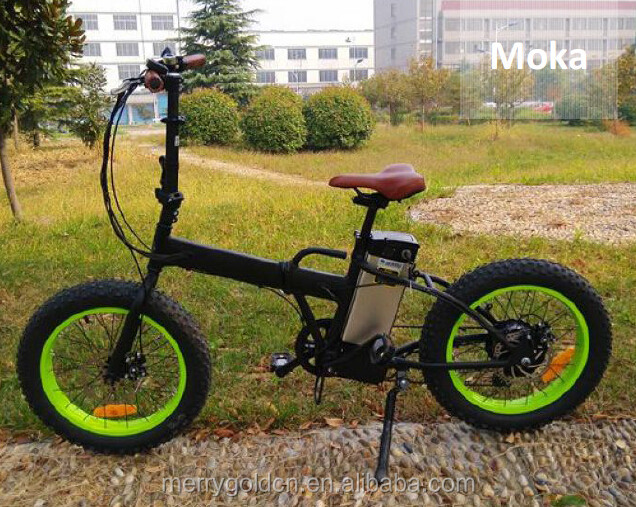 36v 10.4ah samsung cell Li-ion battery electric bicycle rear 250w motor with EEC certification